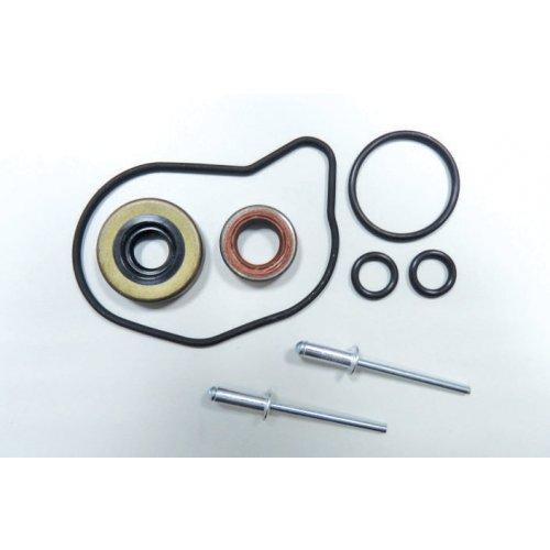 Bosch CP3 Gear Pump Repair Kit  euro diesel