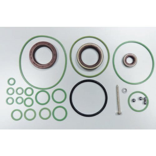 Repair Kit C/R Pump Cp3   euro diesel