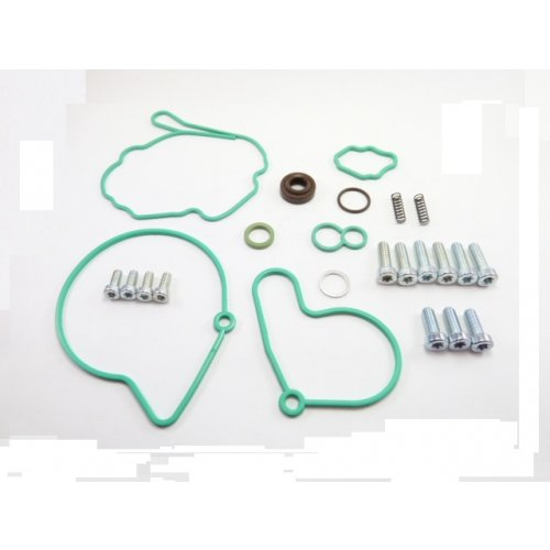 Tandem Pump Repair Kit F009D00001 euro diesel
