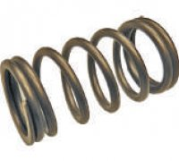 Compression Spring Pump C/R Cp3 A1-24022 F00R0P1279
