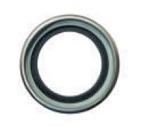 Oil Seal A5-01166 F00R0P1535 Old