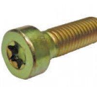 Torx Screw C/R Pump Cp2 A1-24034 2469403039