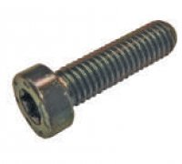 Torx Screw Use CR CP4 - CP Pumps A1-24044 1463C14001