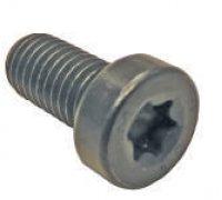 Torx Screw A1-21010 F01M100684