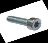 Torx Screw A1-21011 F00R0P0351