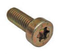 Torx Screw A1-21230 2912732197