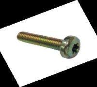 Torx Screw A1-24330 F00R0P0556