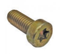 Torx Screw A2-06010 2912742196