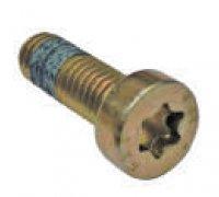 Torx Screw A2-06013 2914552158
