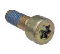 Torx Screw A2-06054 2413414020