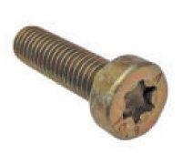 Torx Screw A2-06056 2912742202