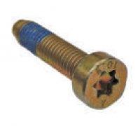 Torx Screw A2-06064 1413414013
