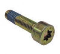 Torx Screw A2-06082 2914552175