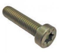 Torx Screw A2-06086 2912732203