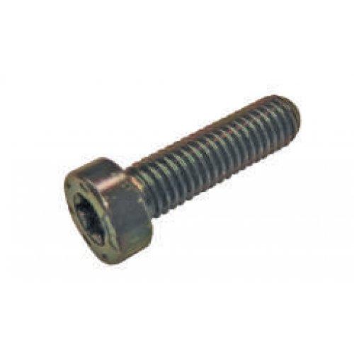 Torx Screw C/R Pump Cp2 F019D03367 euro diesel