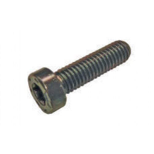 Torx Screw Use CR CP4 - CP Pumps 1463C14009 euro diesel